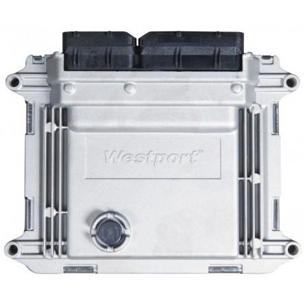 53404.3763010 Блок управления двигателем WP580